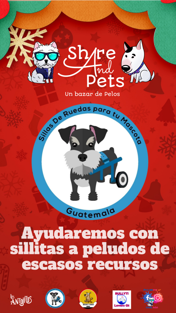 Share And Pets (Un bazar de pelos) domingo 1 de diciembre