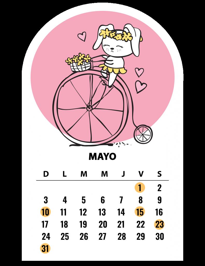 Calendario PETmi 2020: Fechas importantes