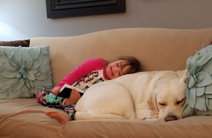 Personas con discapacidad son ayudadas por mascotas