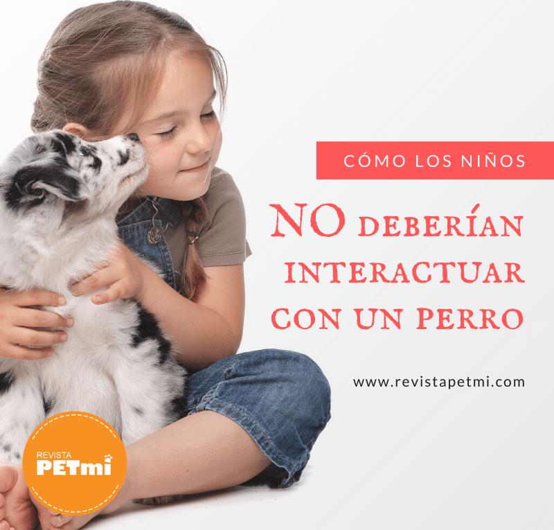Cómo los niños NO deberían interactuar con un perro
