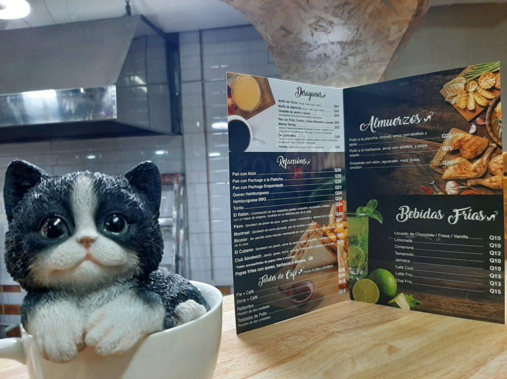 café mishos el primero café dedicado a los gatos en Xela