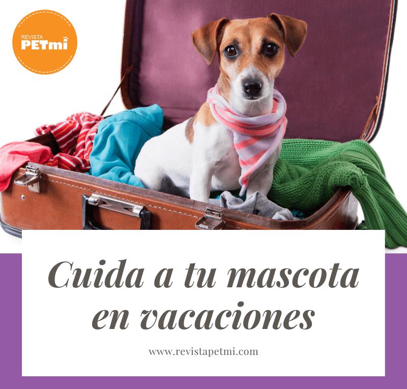 Cuida a tu mascota en vacaciones (2) (1)