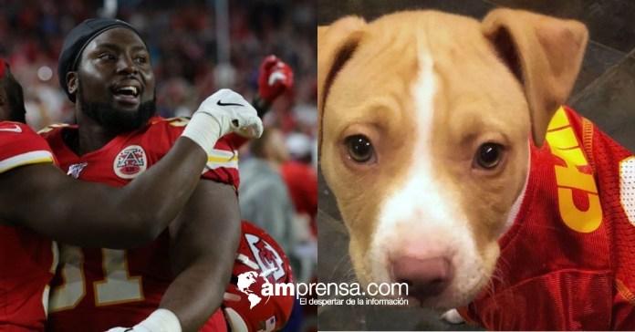 Super Bowl: jugador paga la adopción de 109 perros