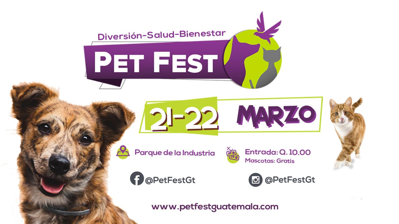 PET FEST 2020