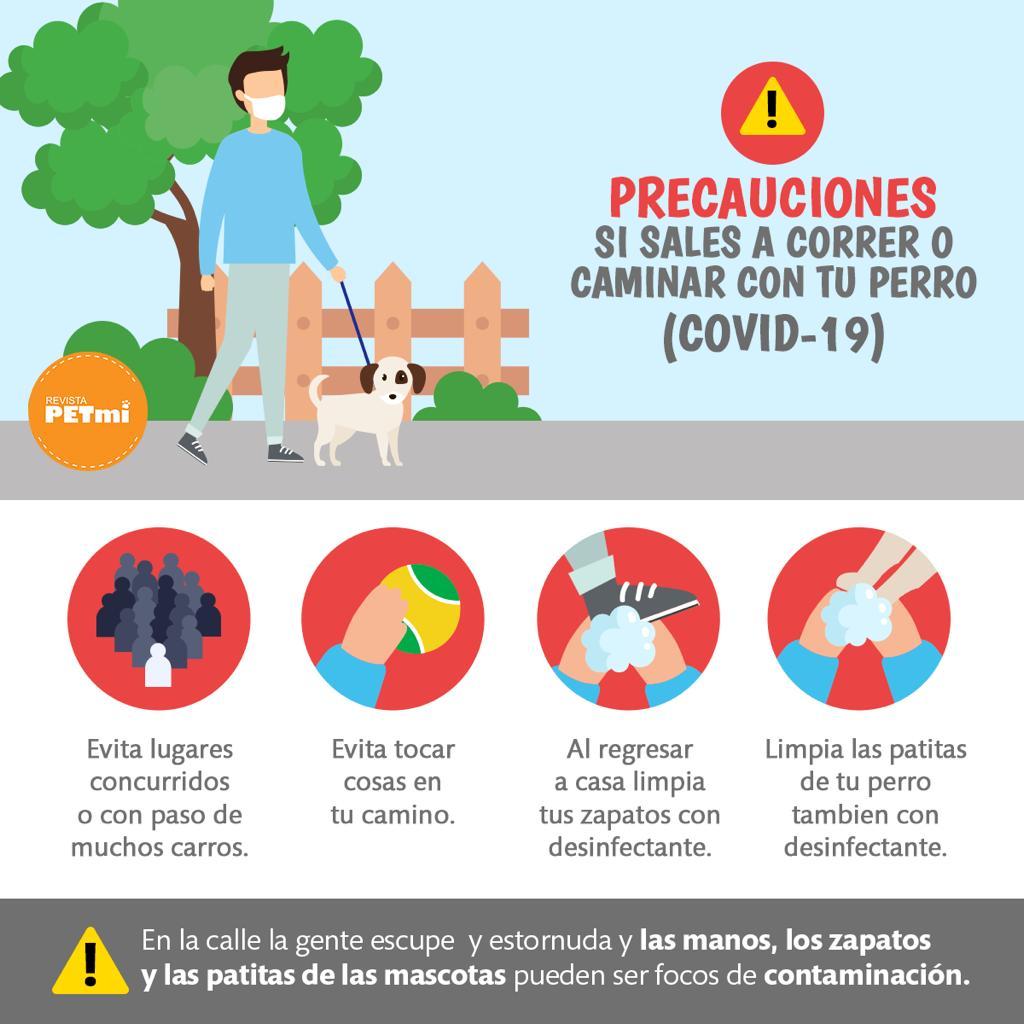 ¿Puedo salir a correr o caminar con mi perro durante la cuarentena de COVID-19?