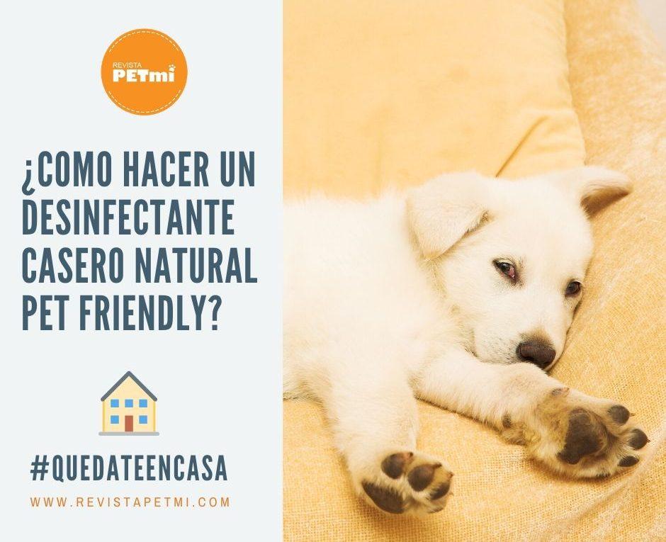 Desinfectante Casero para mascotas (2)