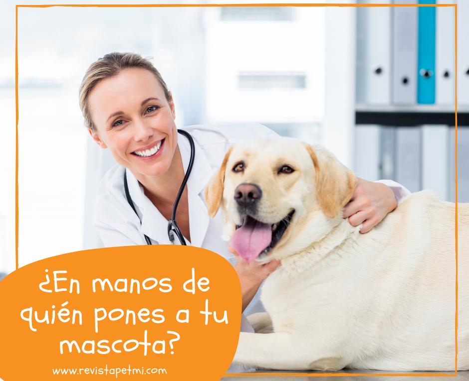 ¿En manos de quién pone a su mascota_ una vacuna mal administrada