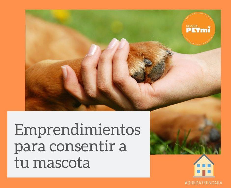 Emprendimientos para consentir a tu mascota