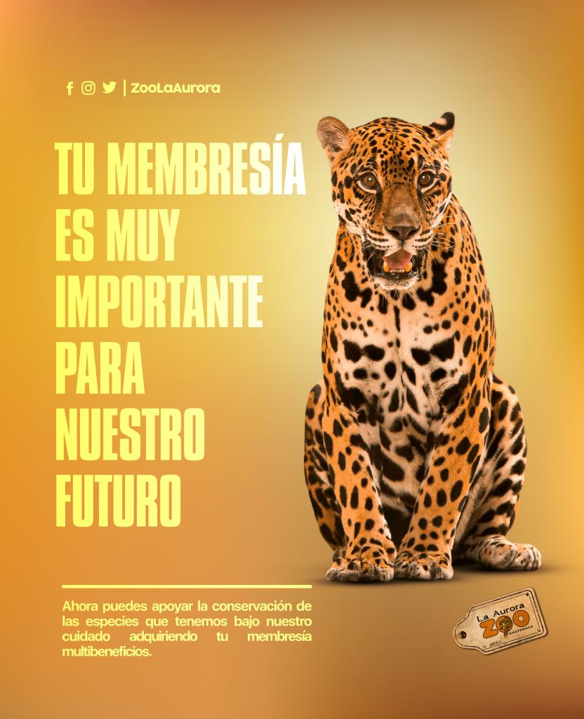 Las nuevas membresias del zoologico La Auroa te traerán muchos beneficios y diversión