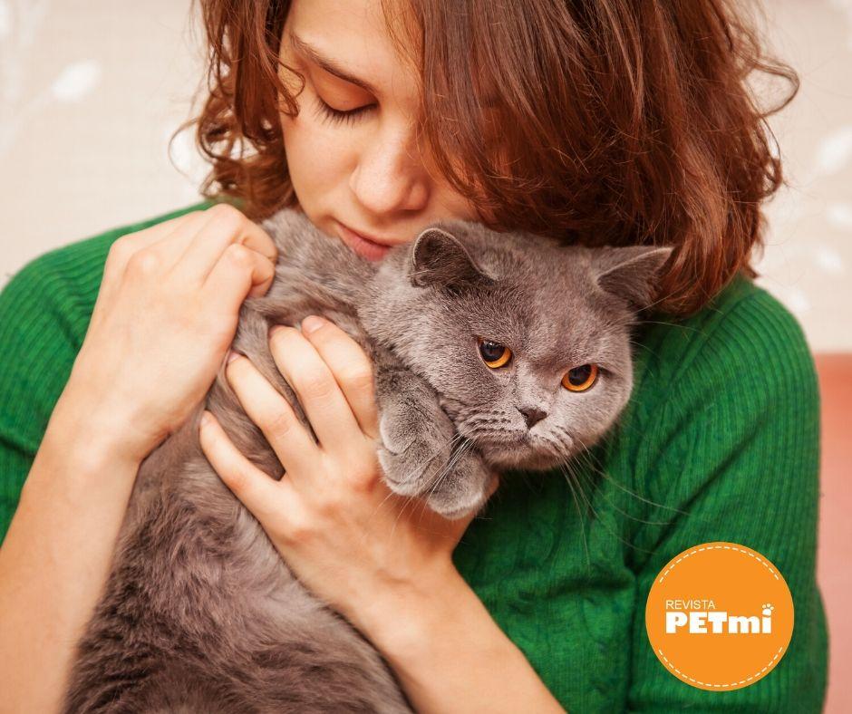 Acariciar un gato no sólo es placentero y beneficioso para el gato