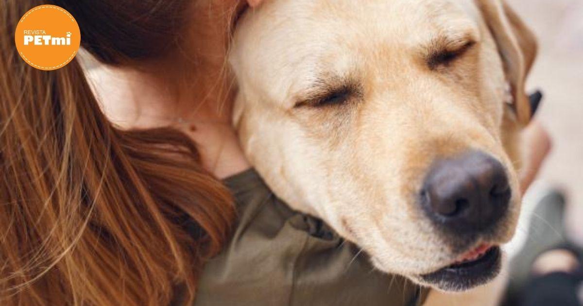 Familia salva a sus perritos del huracan Hanna