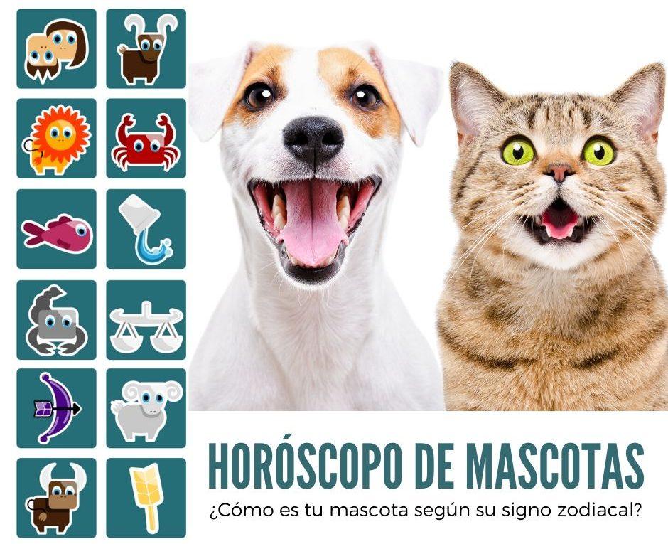 Horóscopo de mascotas-min