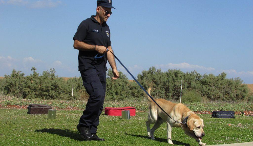 perros policia anticovid