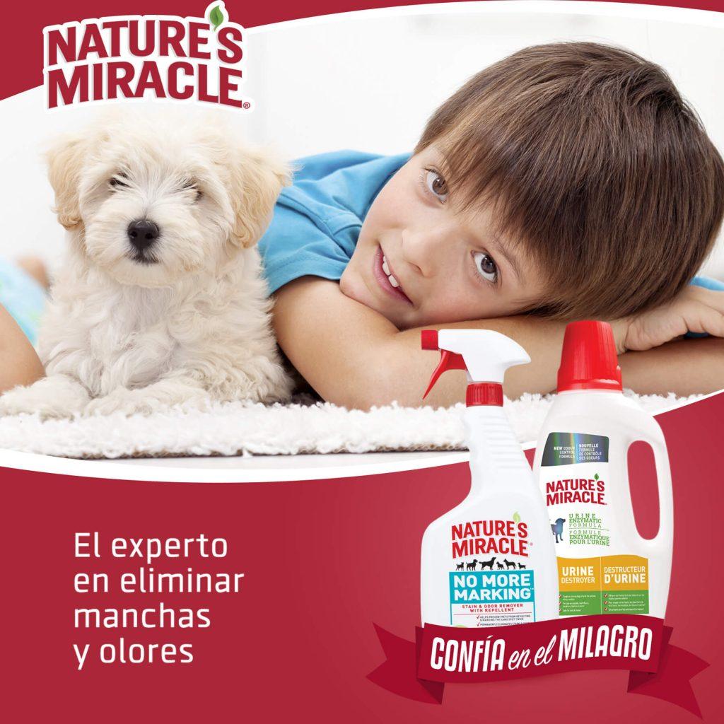 Nature's Miracle, el experto en eliminar manchas y olores.