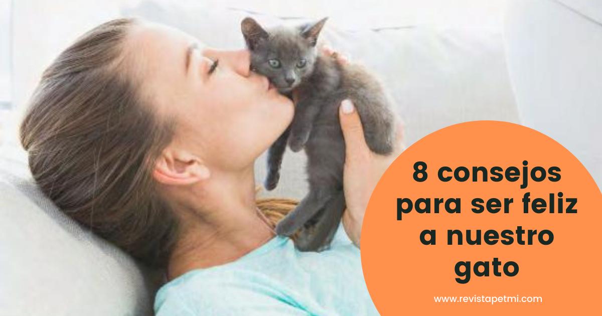 8 consejos para ser feliz a nuestro gato
