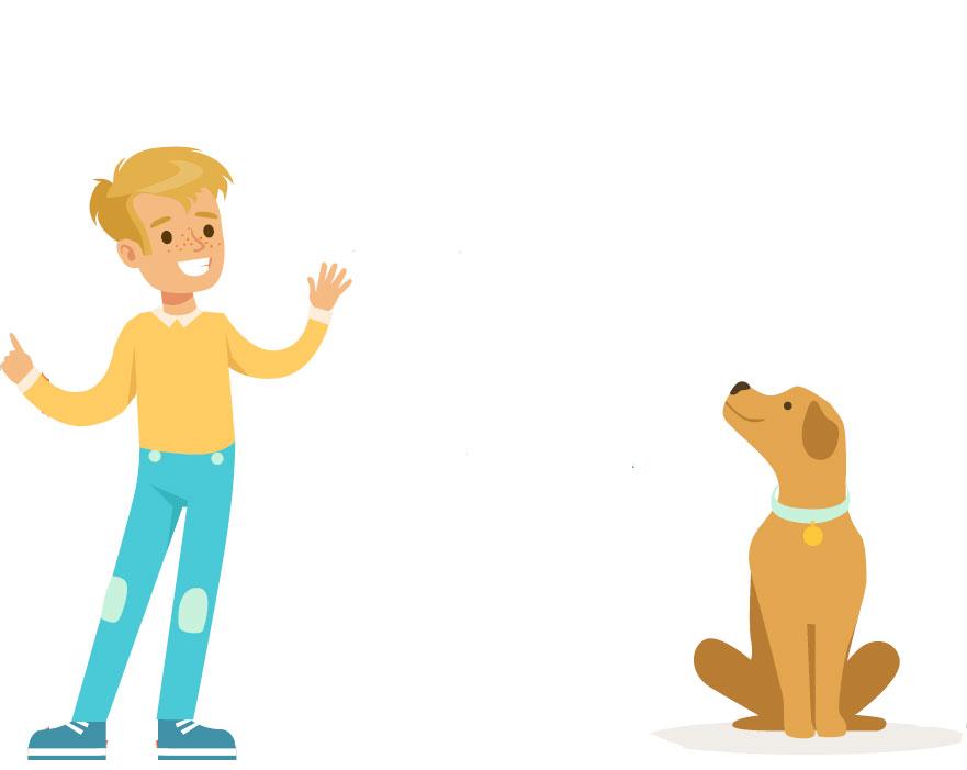 Enseña a tu perro quedarse quieto