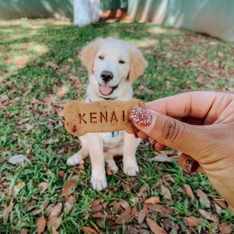 Malús: Repostería para perros