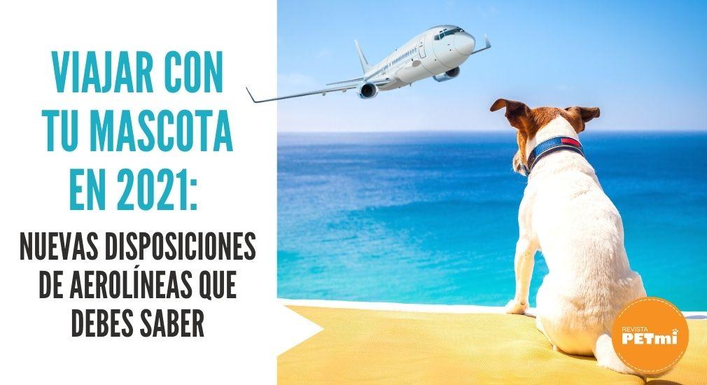 Viajar con tu mascota en 2021_ Nuevas disposiciones de Aerolíneas que debes saber