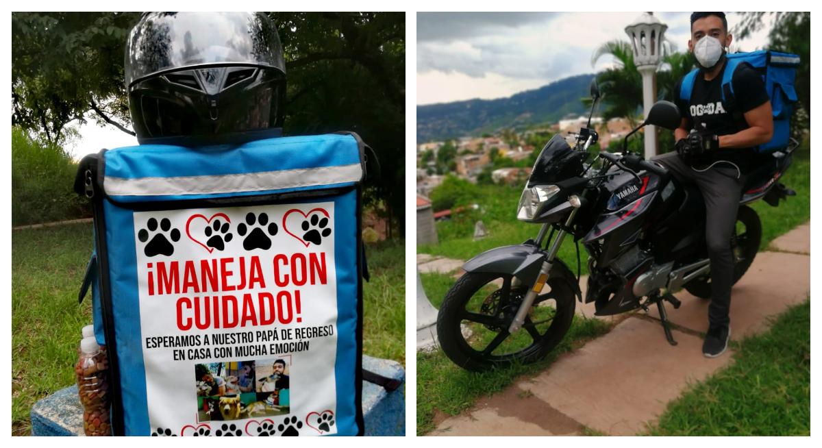 Joven que ofrece servicios de Delivery alimenta a perritos de la calle