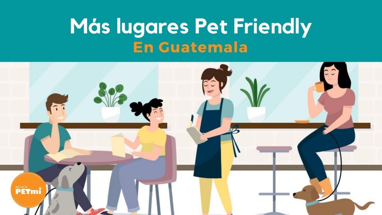 Más lugares Pet Friendly en Guatemala