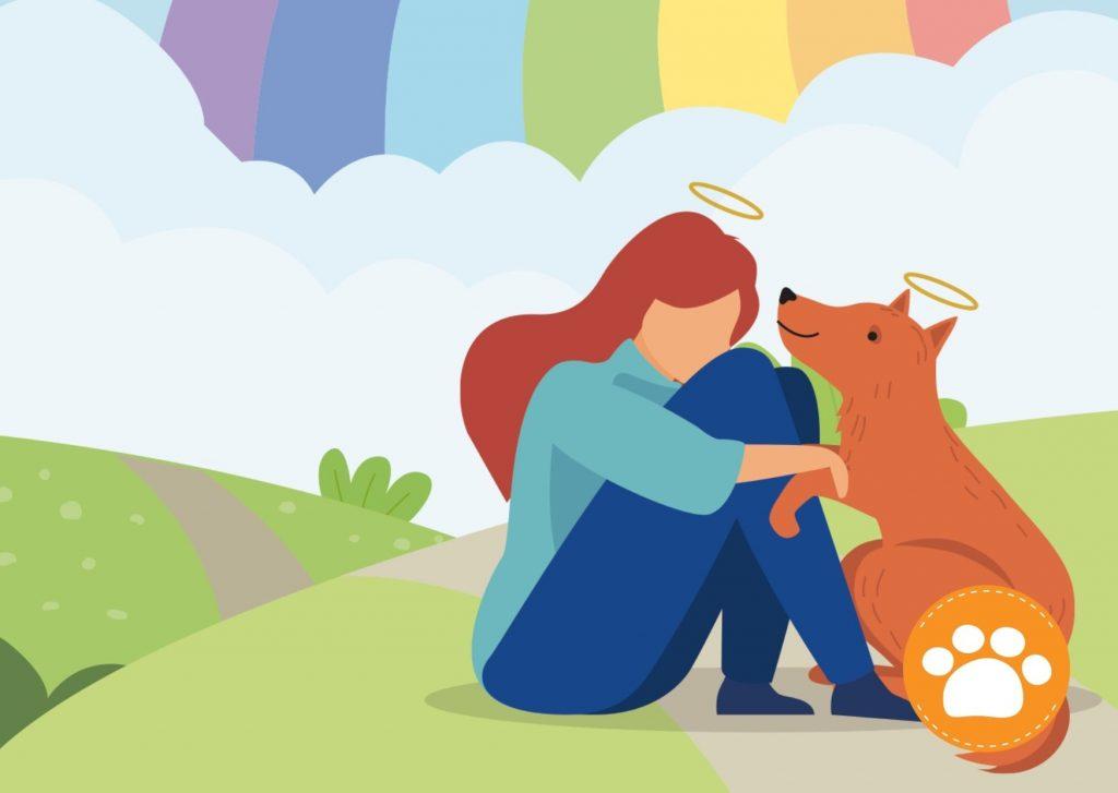 ¿Por qué cuando un animal muere decimos que cruza el arcoíris?