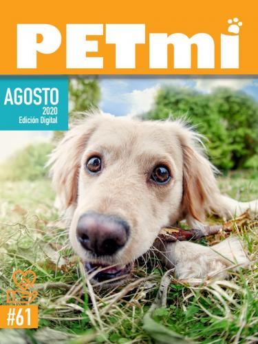 Revista Digital AGOSTO