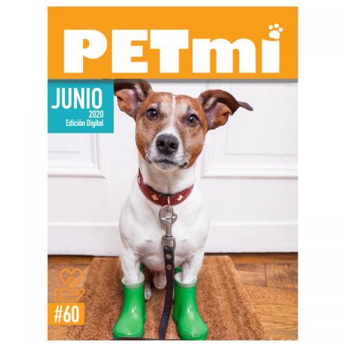 Revista Digital JUNIO